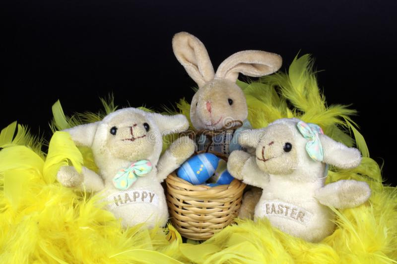 Two decorative hapy easter sheep white easter bunny stock photography