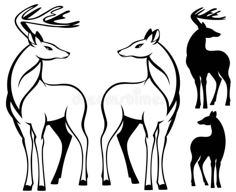 Download Two deers vector stock vector. Illustration of cute, illustration - 20488673