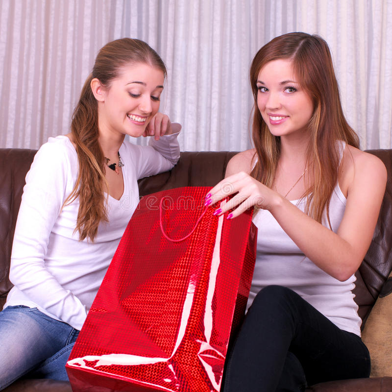 Two delighted women with shopping royalty free stock photography