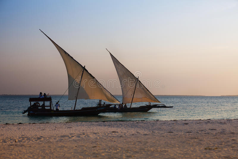 Two dhows in sunset. Two dhows sailing in sunset royalty free stock images