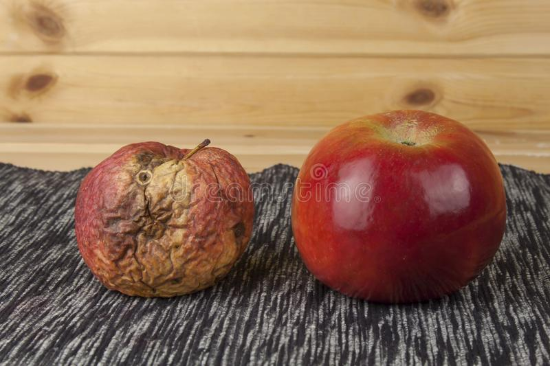 Two different apples, fresh and withered. Moldy apple as concept of skin problems. Rotten apple royalty free stock photos