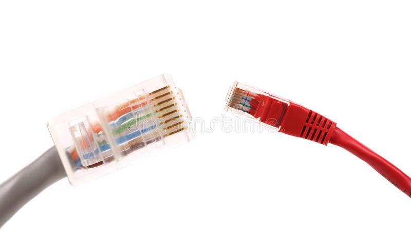 Two differrent network cables. royalty free stock photography