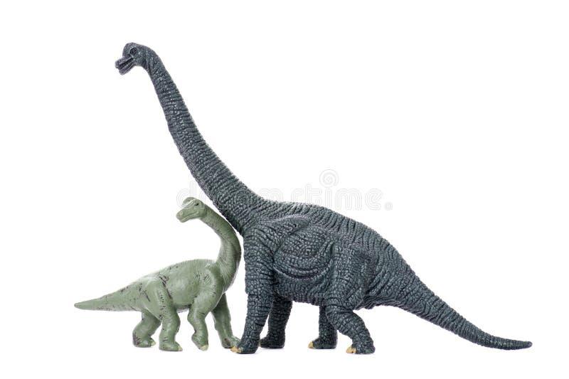 Download Two Dinosaur Stock Photos - Image: 11586013