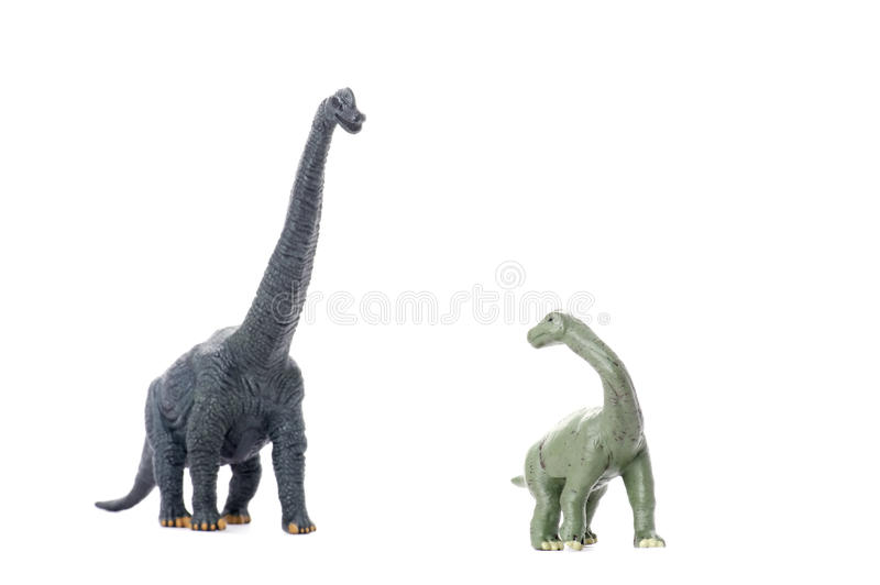 Two Dinosaur Isolated On White Royalty Free Stock Images