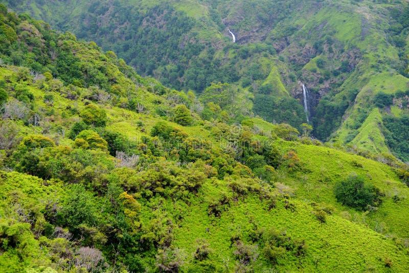 Two distant waterfalls in tropical hawaiian rain forest, Maui, Hawaii stock photo