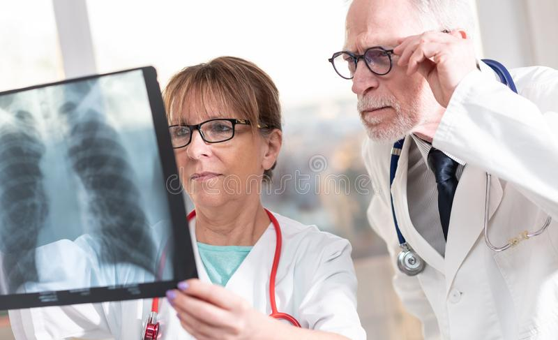 Two doctors examining x-ray report. In medical office stock image