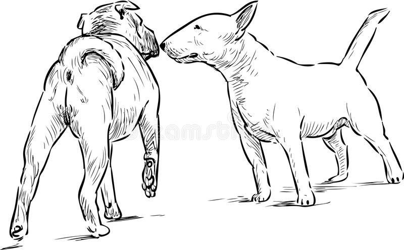 two dogs stock illustration