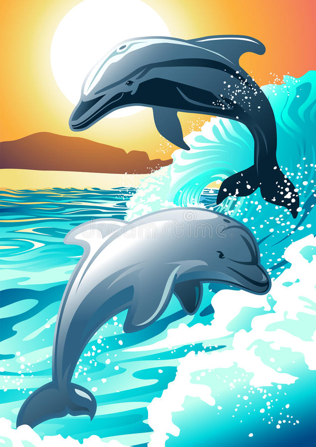 Two dolphin swimming at a beach at sunrise royalty free illustration