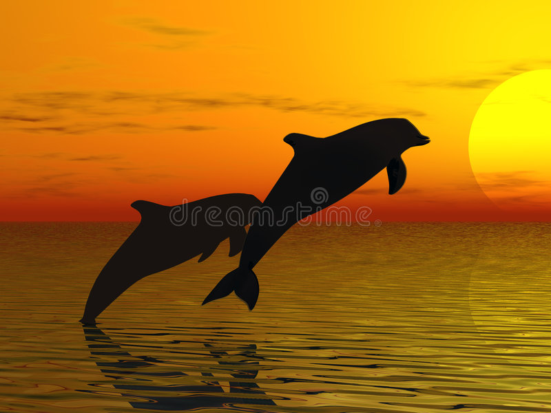 Two dolphins swimming stock illustration