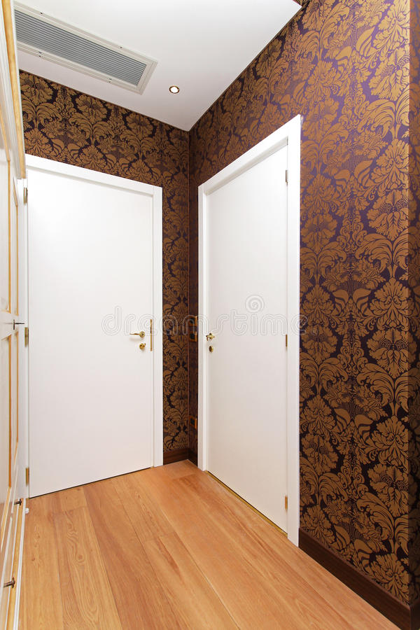 Download Two Doors Royalty Free Stock Image - Image: 25307456