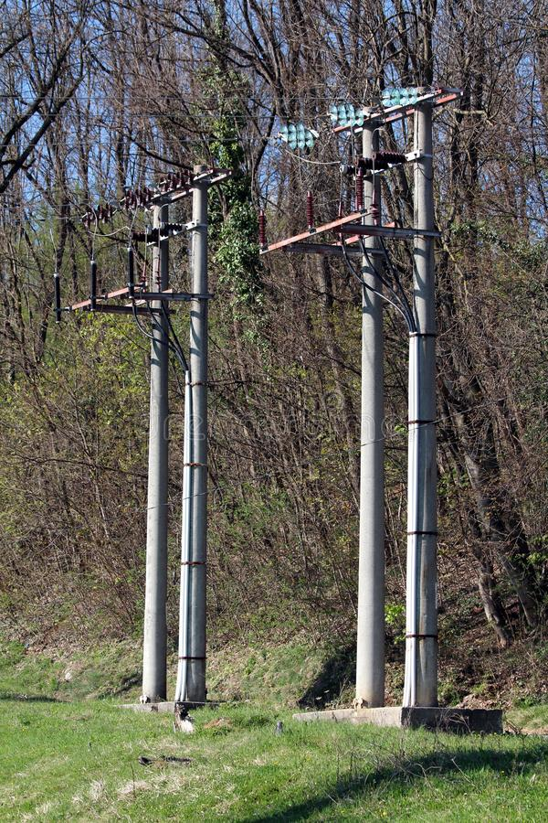 Two double concrete electrical power line utility poles with ceramic and glass insulators surrounded with uncut grass and dense stock image