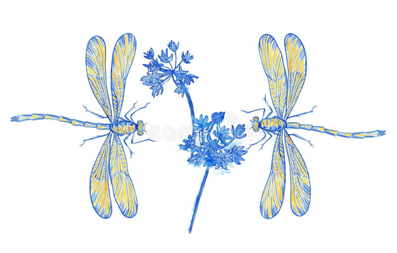 Two dragonflies blue and flowers in decoration style on white. stock photos