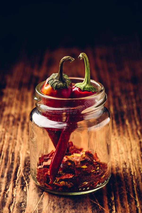 Two dried red chili peppers in jar royalty free stock images