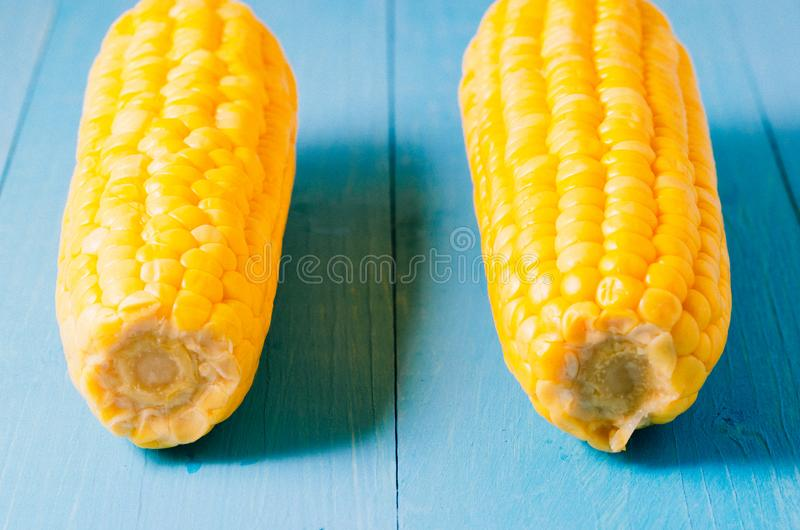 Two ears of boiled appetizing corn on a blue table/vegetarian concept. Two ears of boiled appetizing corn on a blue table. Healthy stock photo