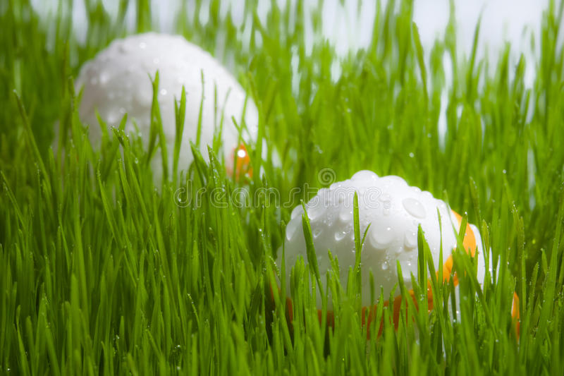 Two easter Eggs on grass with water drops stock photos