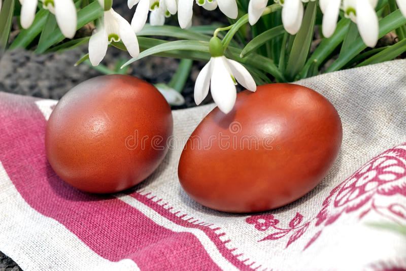 Two Easter eggs and snowdrops. stock photos