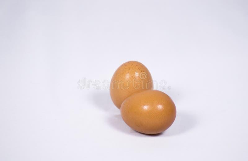 Two eggs stock photos