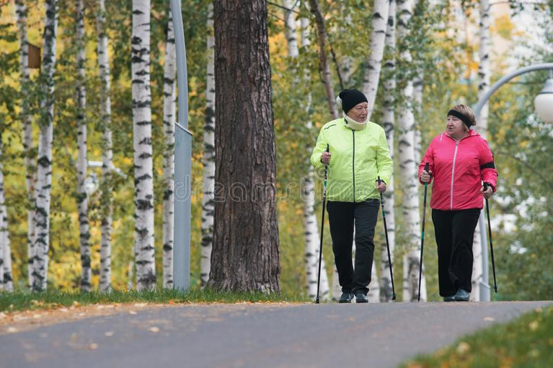 Two elderly women are involved in Scandinavian walking in the park stock photo