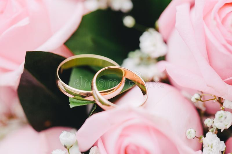 Two elegant gold rings for the wedding of lovers with scenery from fresh roses. Beautiful decoration for the wedding. Festive postcard stock image