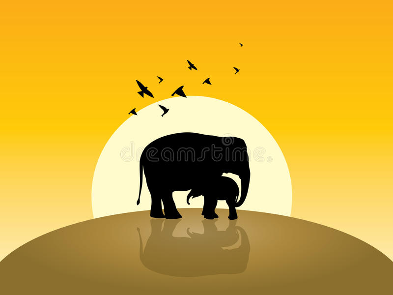 Two elephant, sunrise and flying some birds royalty free stock photo