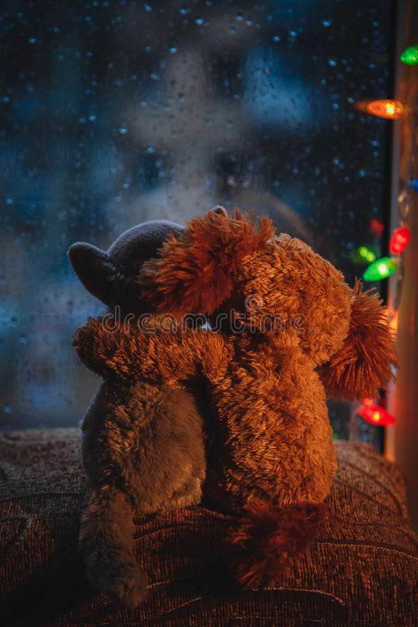 Two embracing loving friends cat and dog toys hugging sitting on window-sill, looking in the window. Raining outside. Christmas stock photography