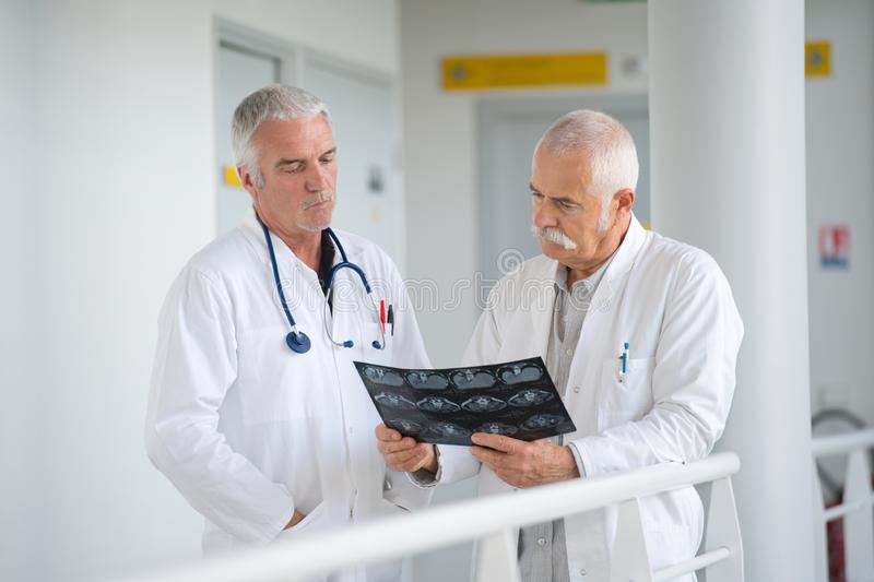 Two experienced male doctors discussing x-rays in hospital corridorb royalty free stock photos