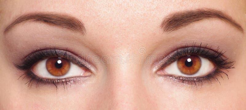 Download Two eyes stock image. Image of beautiful, macro, eyelash - 14086399