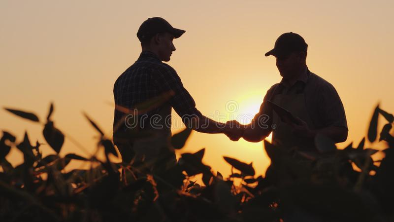Two farmers talk on the field, then shake hands. Use a tablet royalty free stock photo