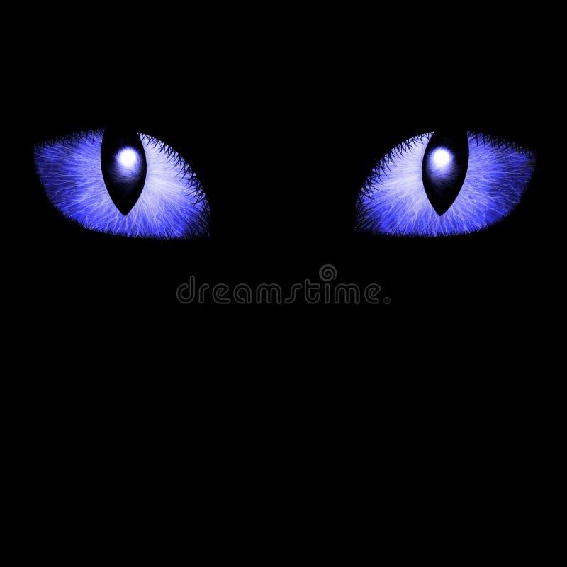 Free Two Feline Eyes Stock Images - 3093004