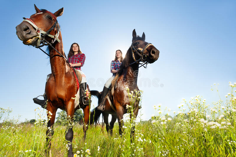 Two female equestrians with purebred brown horses. Bottom view portrait of two female equestrians with purebred horses at countryside royalty free stock photos