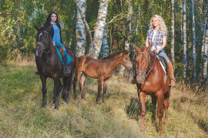 Two female equestrians with purebred brown horses and foal between them.  royalty free stock photography