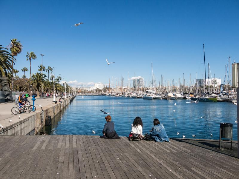 Two female tourists rest surrounded by seagulls in the old port of the city of Barcelona. Catalonia, Spain stock images