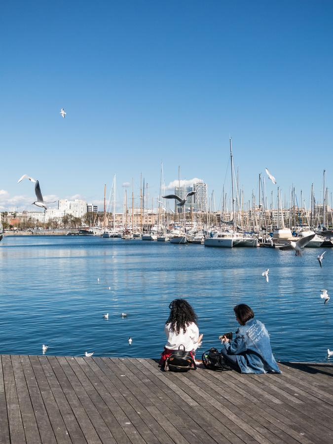 Two female tourists rest surrounded by seagulls in the old port of the city of Barcelona. Catalonia, Spain royalty free stock photos