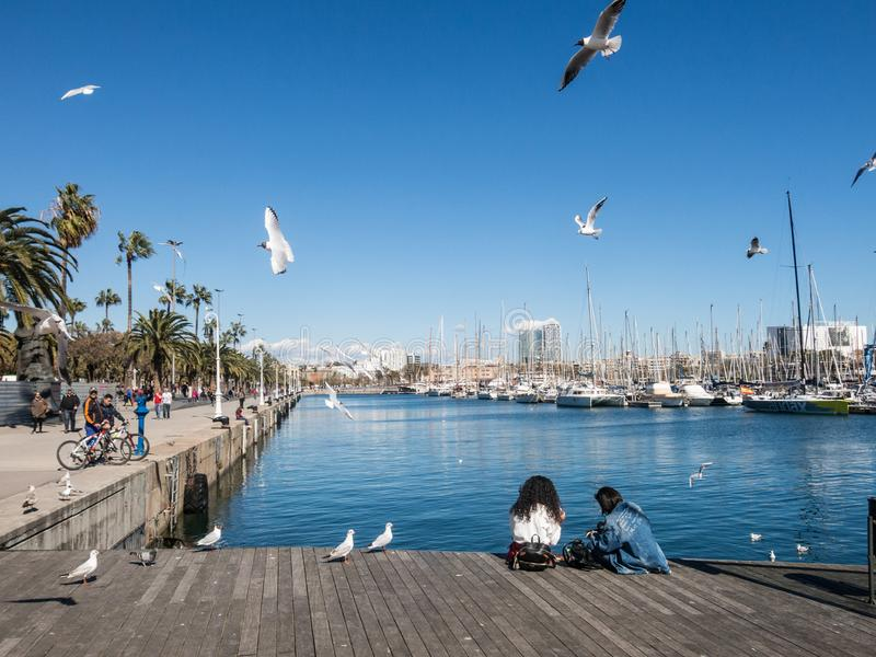 Two female tourists rest surrounded by seagulls in the old port of the city of Barcelona. Catalonia, Spain stock photo