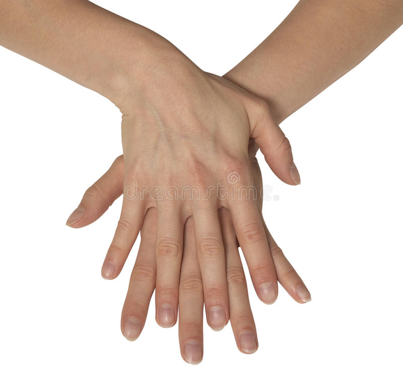 Two Feminine Hands Stock Images