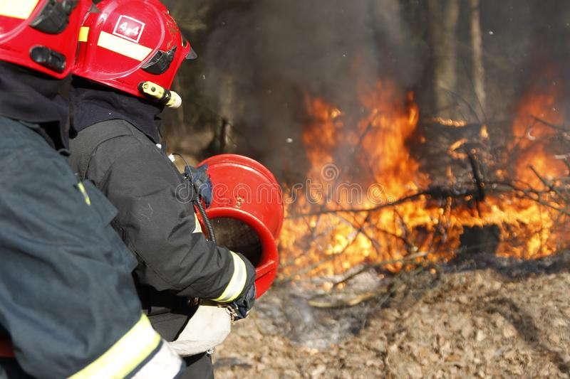Firefighters extinguish forest fire. Two firemen extinguish forest fire.Extinguish the fire. Work firefighter. Fight with fire. Dangerous profession stock photos