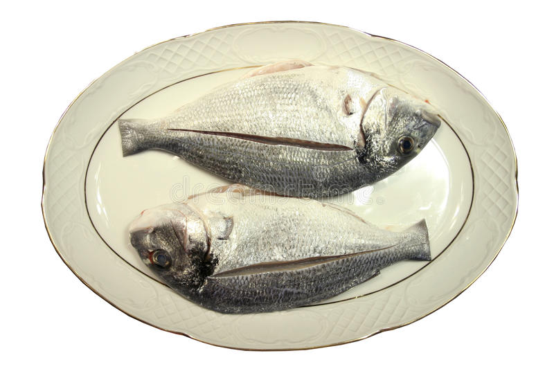 Two fish in plate. Two gilt bream fish in plate royalty free stock photo