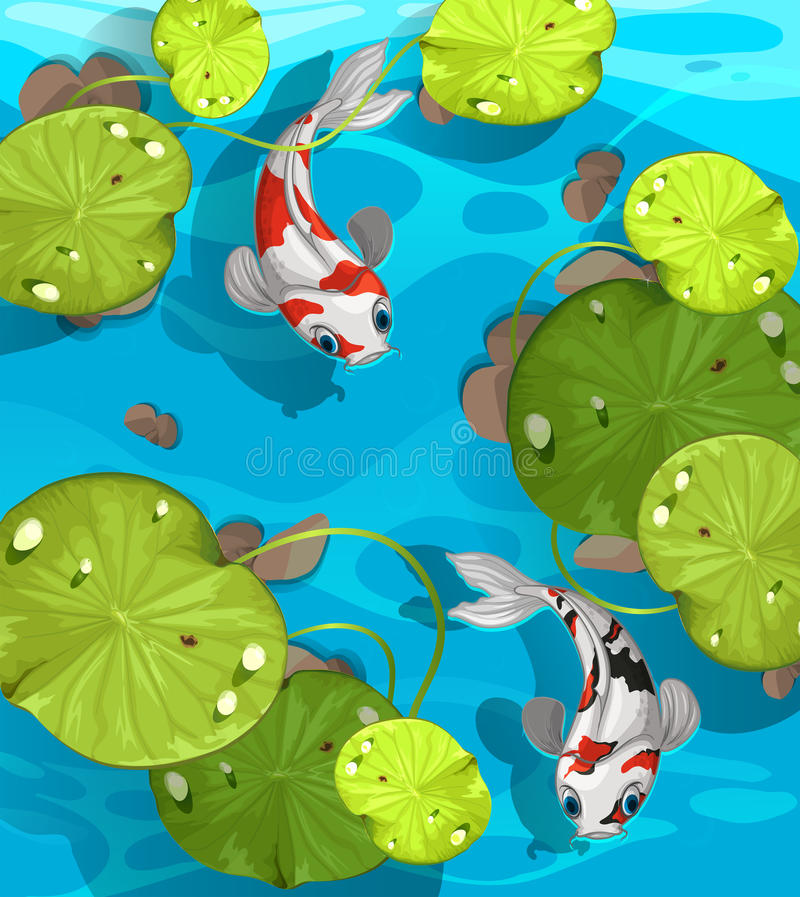 Two fish swimming in the pond. Illustration vector illustration