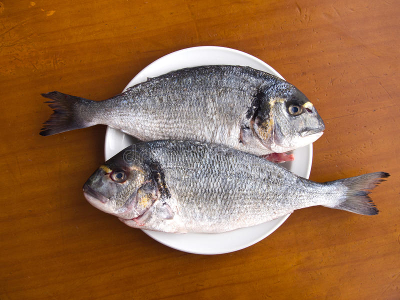 Download Two Fishes On The White Plate Stock Image - Image of gourmet, appetite: 19779345