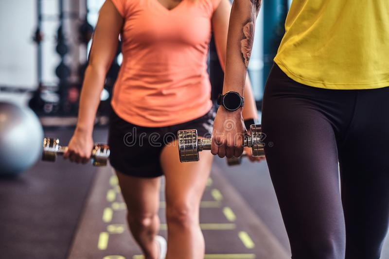 Two fitness girls in sportswear doing lunges with dumbbells in the modern gym. royalty free stock images