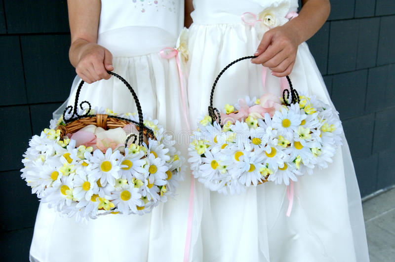 Two Flower Girls Holding Daisy Baskets royalty free stock image