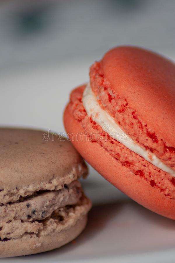 Two French Macaron Cookies on White Plate stock photography