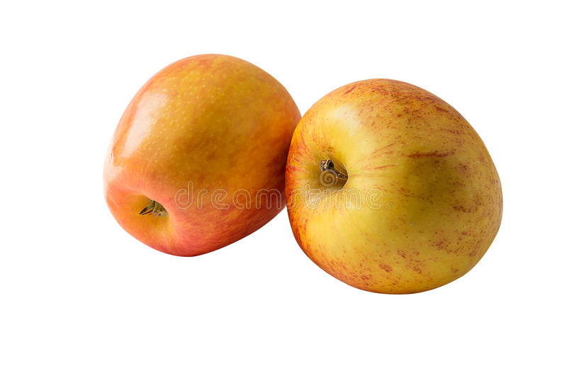 Two fresh apples isolated on a white background stock photography