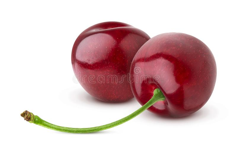 Two fresh cherries isolated on white background royalty free stock photo