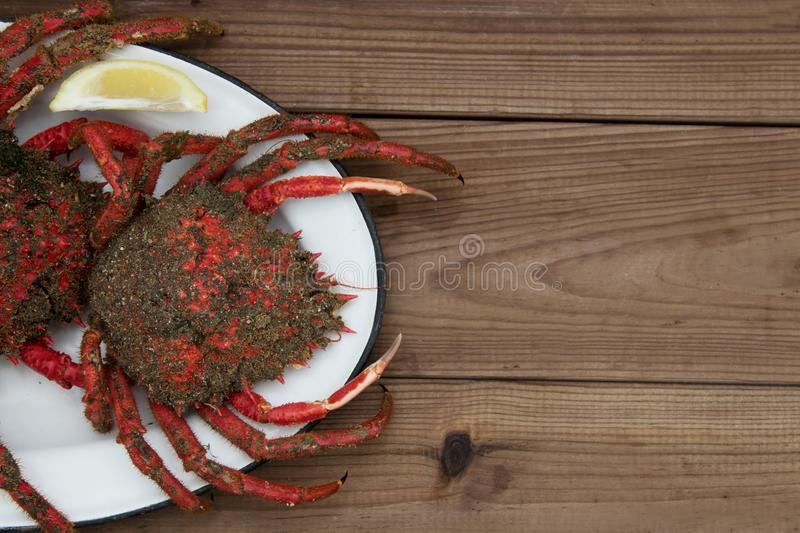 Two fresh crabs on plate royalty free stock photos
