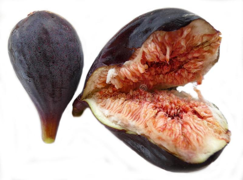 Two fresh figs royalty free stock photos