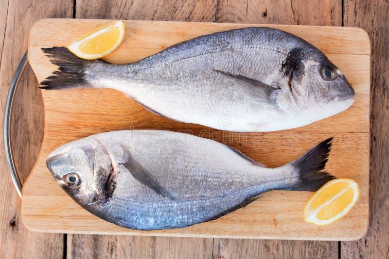 Two fresh gilt-head bream fish on cutting board royalty free stock image