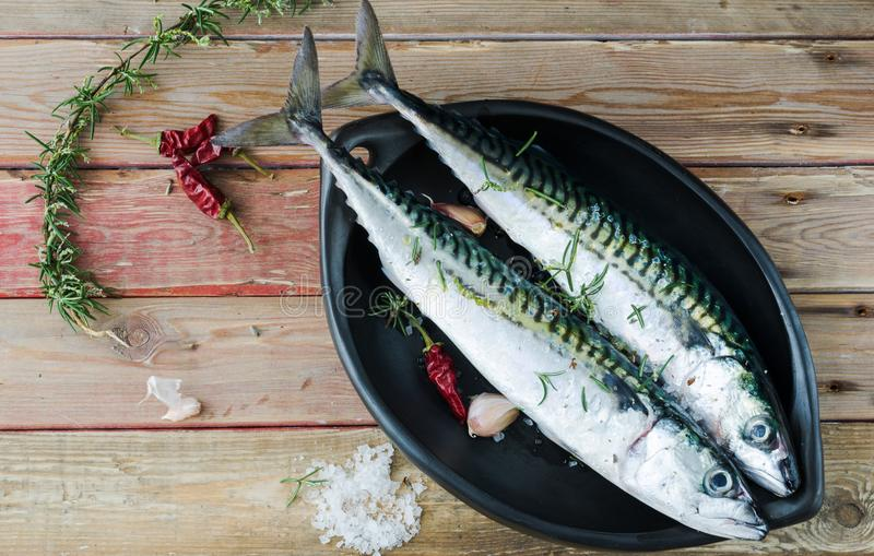 Fresh mackerel in ceramic bowl over wooden background. Top view. stock photography