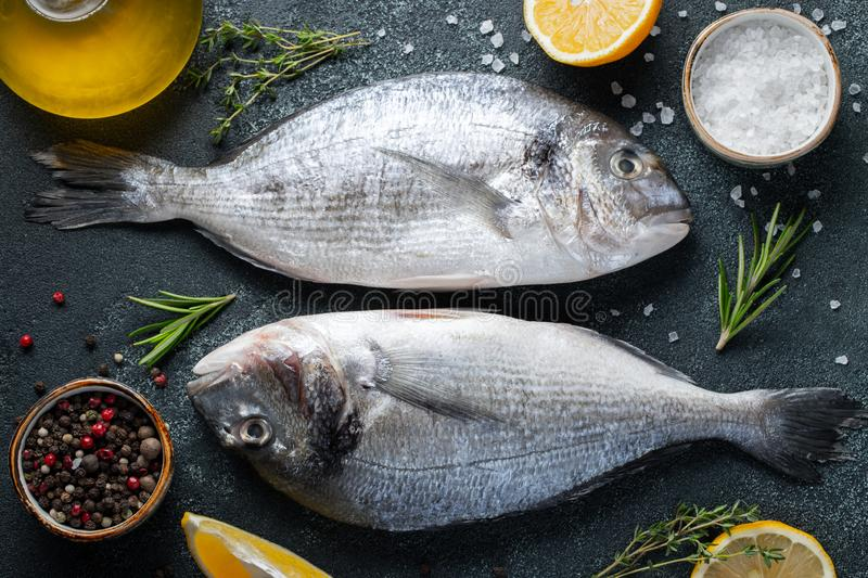 Two fresh raw Dorado fish with spices and olive oil on a dark stone table. Top view. Flat lay.  royalty free stock photo