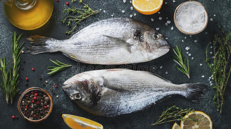 Two fresh raw Dorado fish with spices and olive oil on a dark stone table. Top view. Flat lay.  stock photography